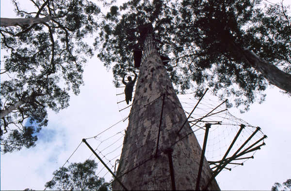 Australien 03212