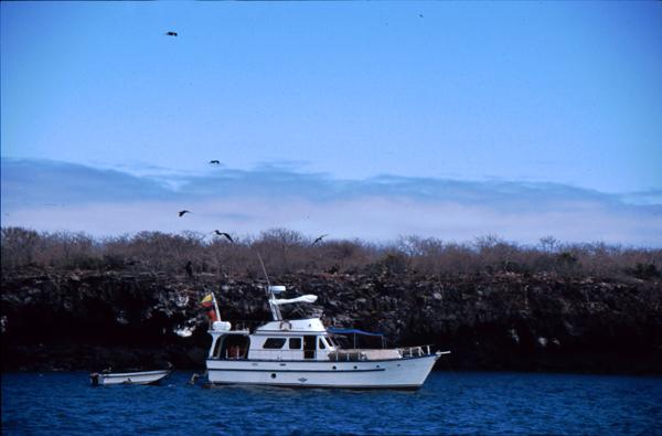 Galapagos053