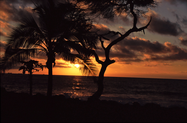 Hawaii111