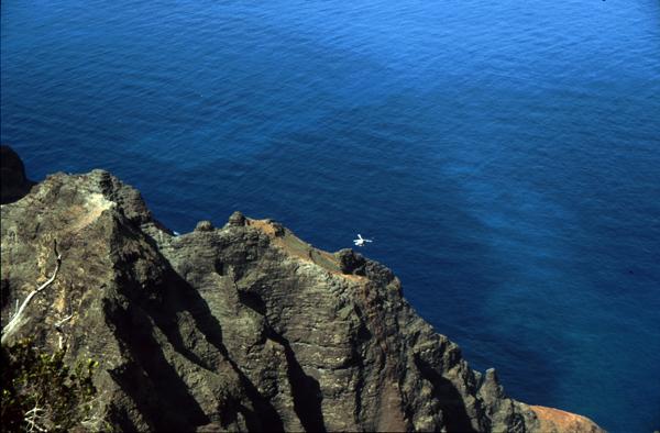 Hawaii205