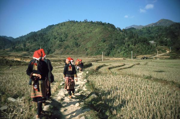 Vietnam 02073