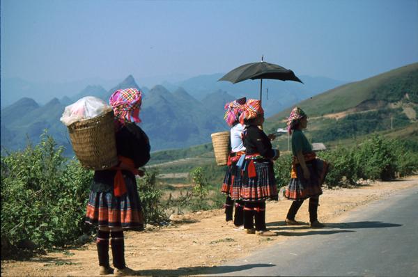 Vietnam 02104