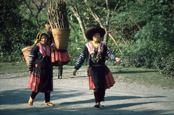 Vietnam 02127