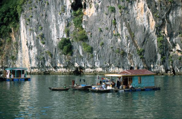 Vietnam 02176