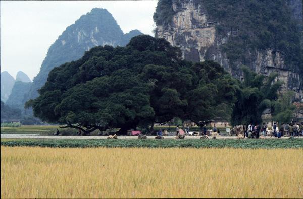 1987-China060