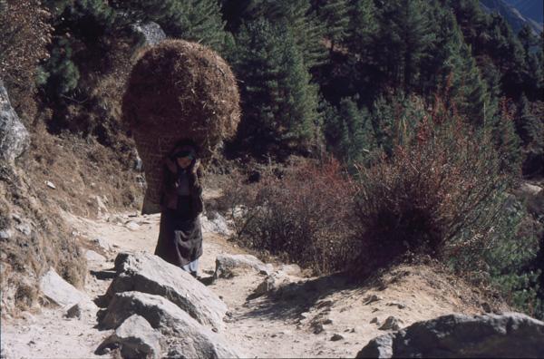 1987-Nepal269