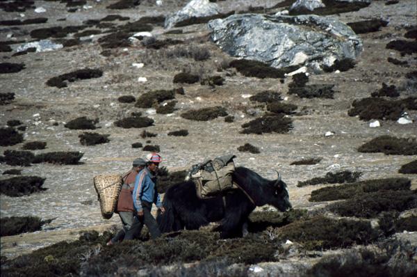 1987-Nepal363