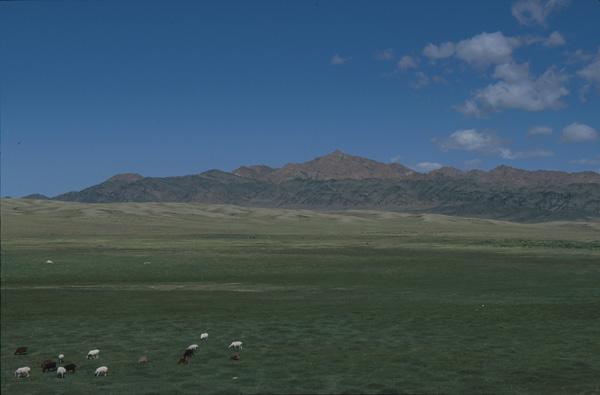 2000-Mongolei-B490