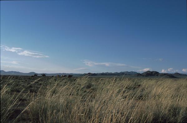 2000-Mongolei180
