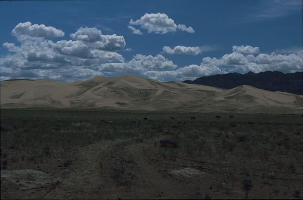 2000-Mongolei301