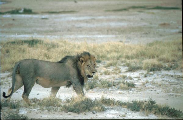 Namibia-02107