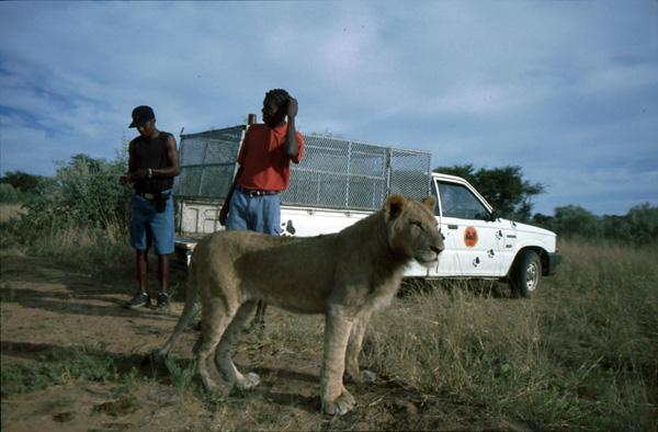 Namibia-02467