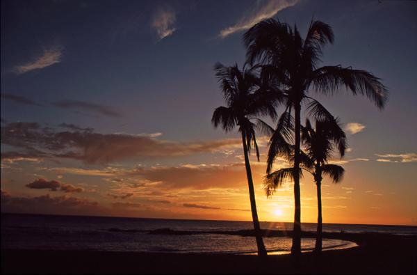 Hawaii217