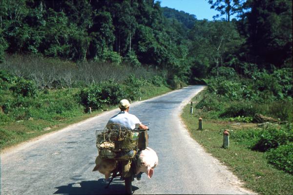 Vietnam 02172
