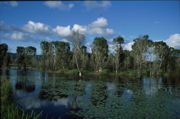 1993-Australien464