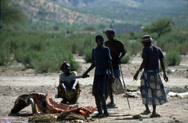 Namibia-02158