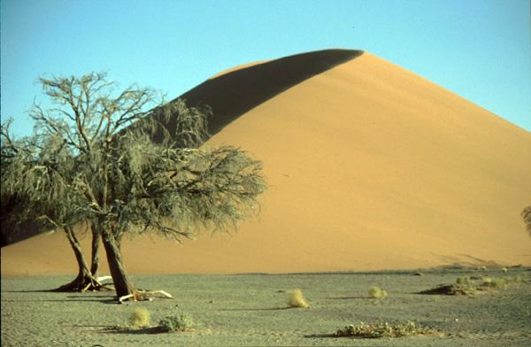 Namibia-02366