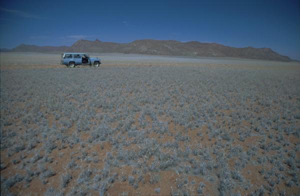 Namibia-02391